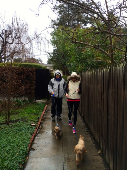 D and Holly and dogs in rain