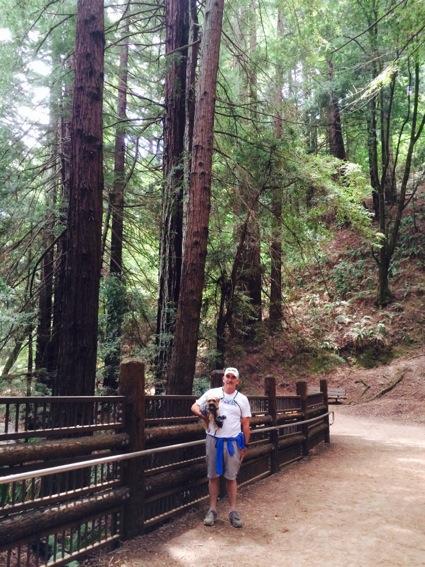 Redwood Regional Park_Stream trail