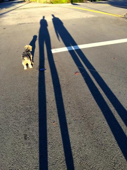 Extra shadowy_12231