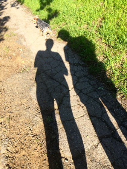 Shadowy with the Mag at Arastradero