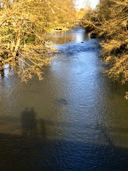 shadowy on river