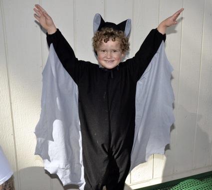 James as vampire bat