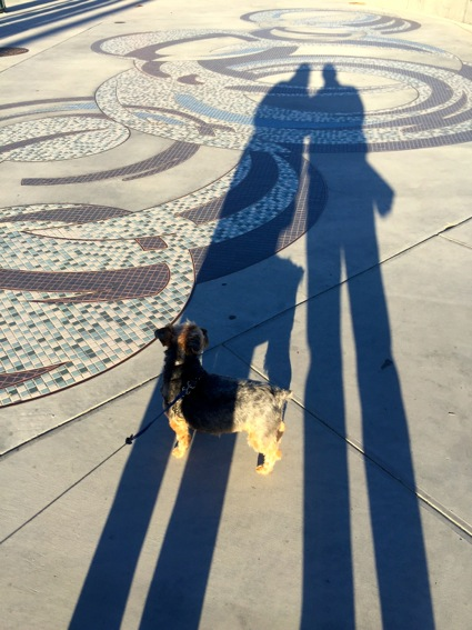 Shadowy in Santa Barbara