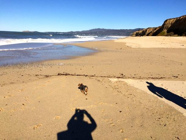Walk on the coast_Dec. 15