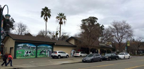 famous ice cream place in Pleasanton