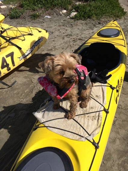 Mag on the kayak