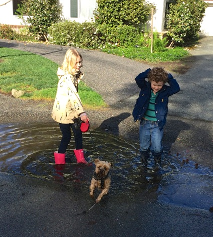 rainy day puddle play