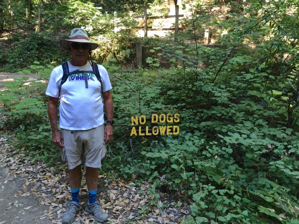 D at Huddart park