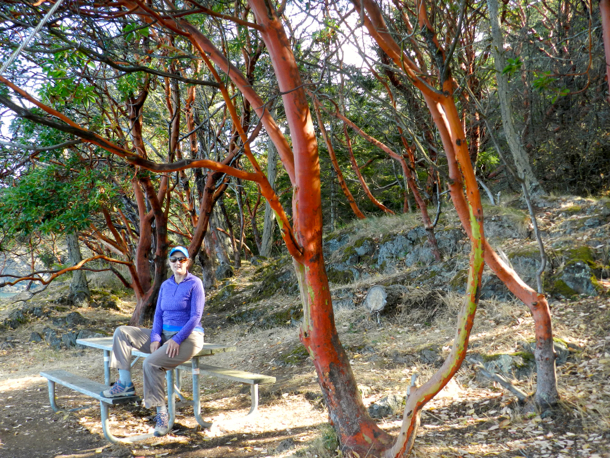 L in Madrone forest