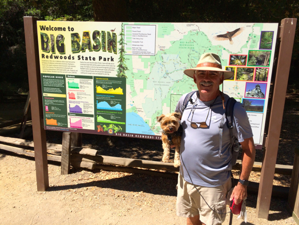 D and the Mag_Big Basin