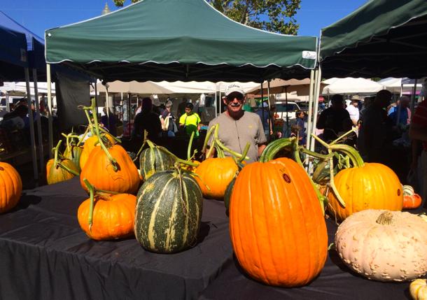 cozzolinos-pumpkins-at-mp-fm