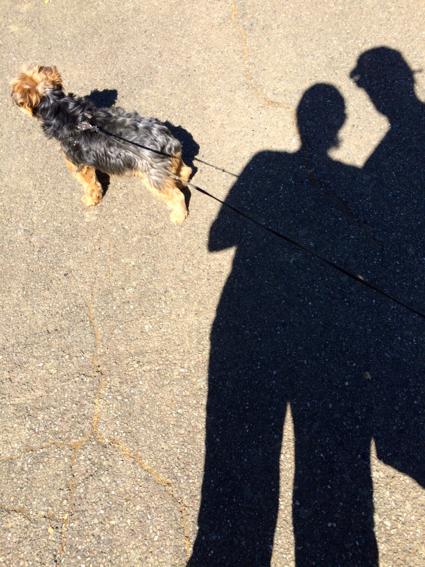 shadowy-at-pulgas