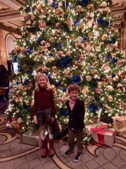 grace-and-james_fairmont-christmas-tree-1