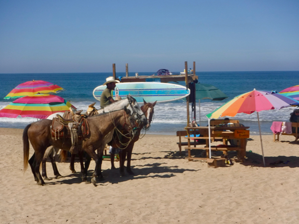 horses-on-beach_san-pancho-1