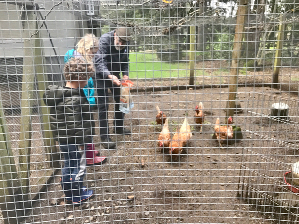 len-and-kids-feeding-chickens-1
