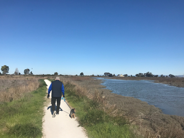 Baylands march walk_lead - 1