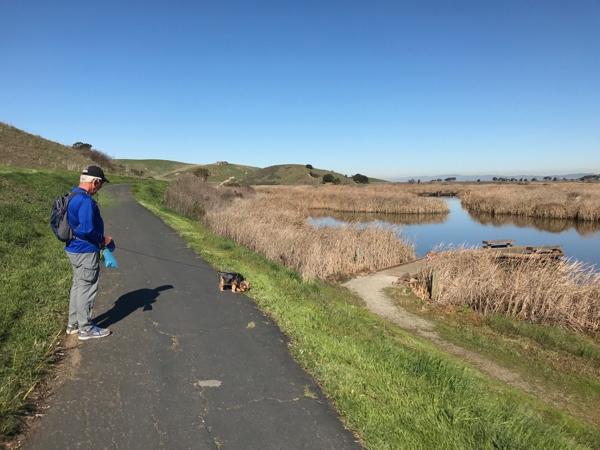 D and the Mag at Coyote Hills_Feb2018 - 1