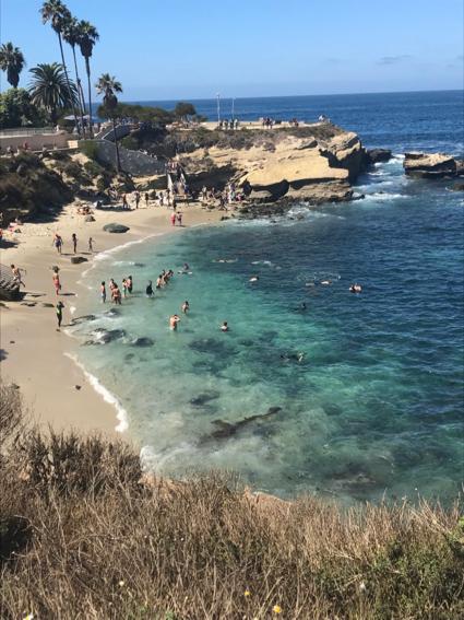 La Jolla Cove - 1
