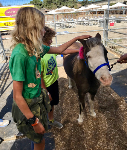 Kiddos petting pony - 1