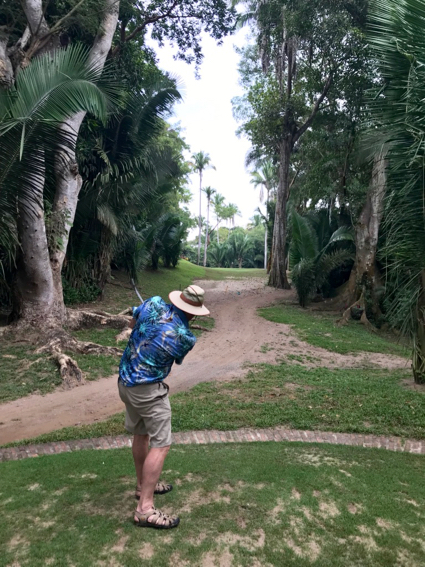 d teeing off on jungle hole - 1