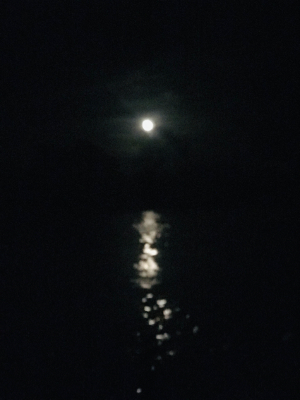 moon on the water - 1